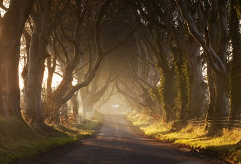 Image of Where can I visit Game of Thrones locations in Northern Ireland?