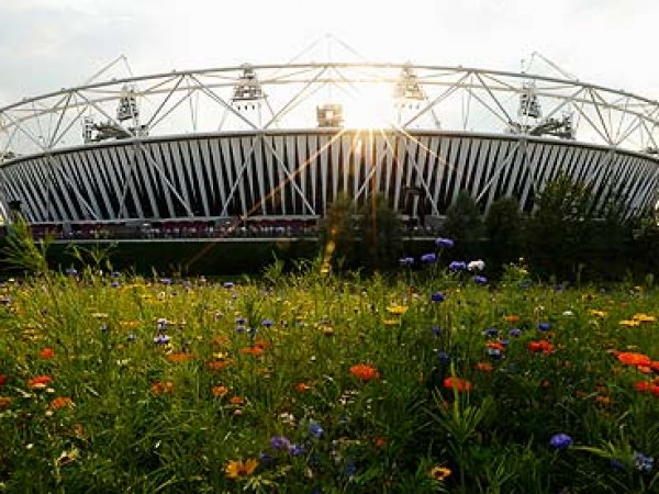 EARS plc are Proud to Announce Collaboration with the Olympic Park