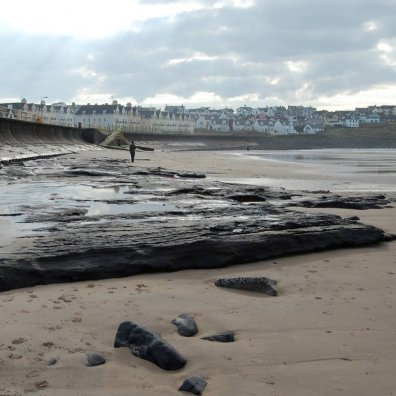 Portrush strand Holocene peat exposure  (7400-6600 calibrated years before present)