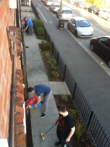 Green-fingered Daniel transforms the flowerbeds of Belfast Housing