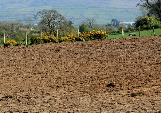UFU president warns of weather difficulties