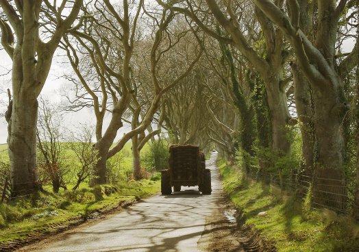 UFU comment on Rural Roads announcement